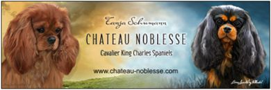 banner chateau noblesse