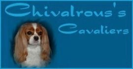 banner chivalrous's